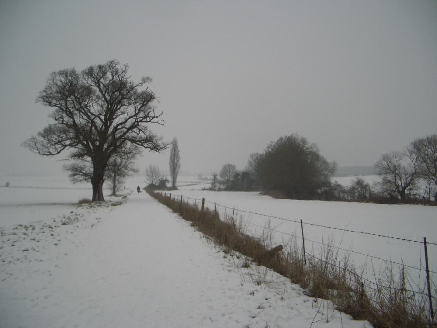 The Three Shire Bridleway, January 2010