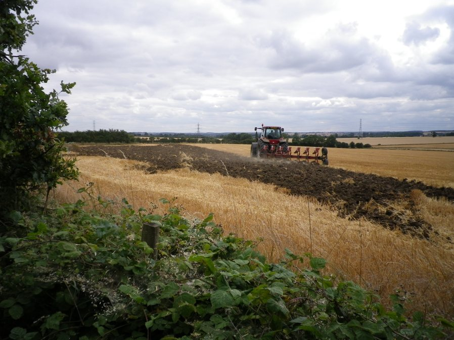 Ploughing the 'Beanfield' below Three Shire Wood - 29th July 2010