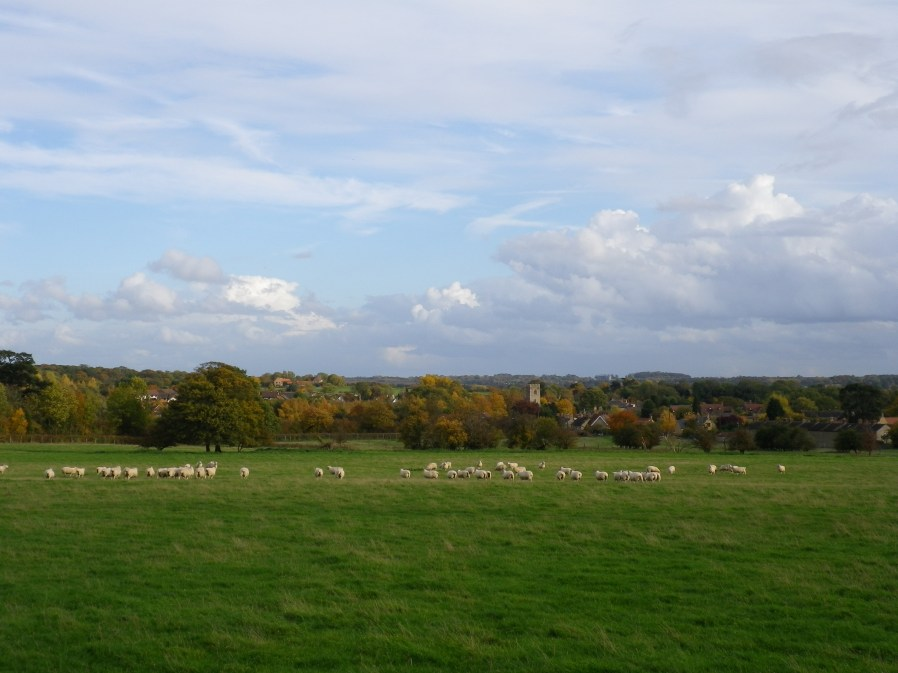 View to the Village from the Footpath above New Row - 30th October 2010