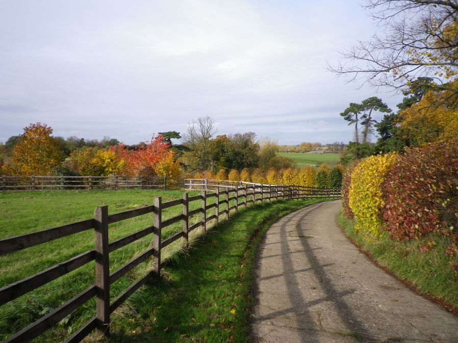 The Three Shire Way near Lavendon Grange - 3rd November 2010