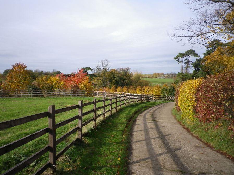 The Three Shire Way near Lavendon Grange - 3rd November 2010