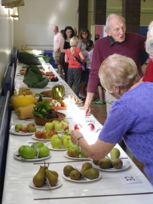 A fine set of fruit & vegetable entries...