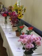Beautiful flower displays...