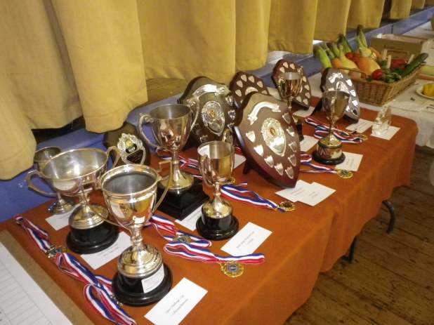 2015 Lavendon Show Trophies